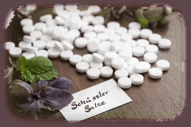 Schüssler Salze Im Zusammenspiel Mit Heilpflanzen